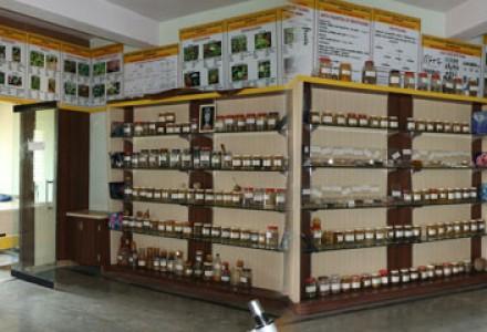 Dravyaguna Department